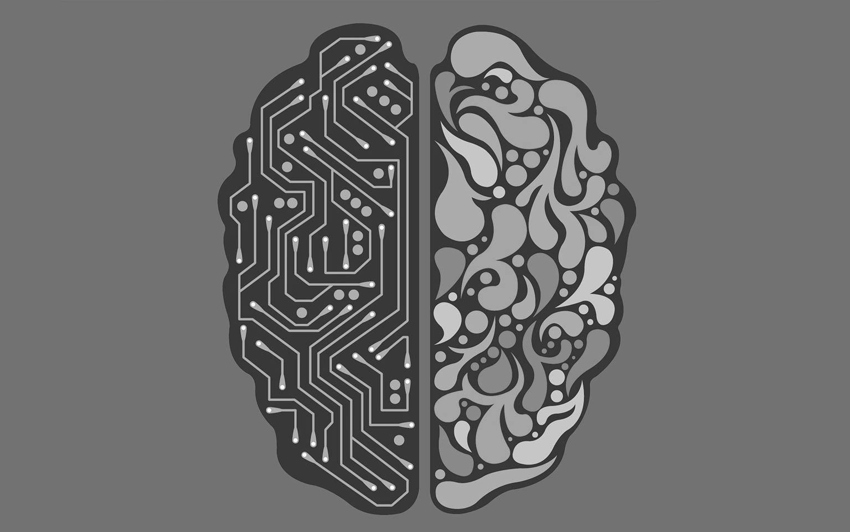 Le reti di neuroni quale base per la costituzione dei sistemi di Intelligenza Artificiale.