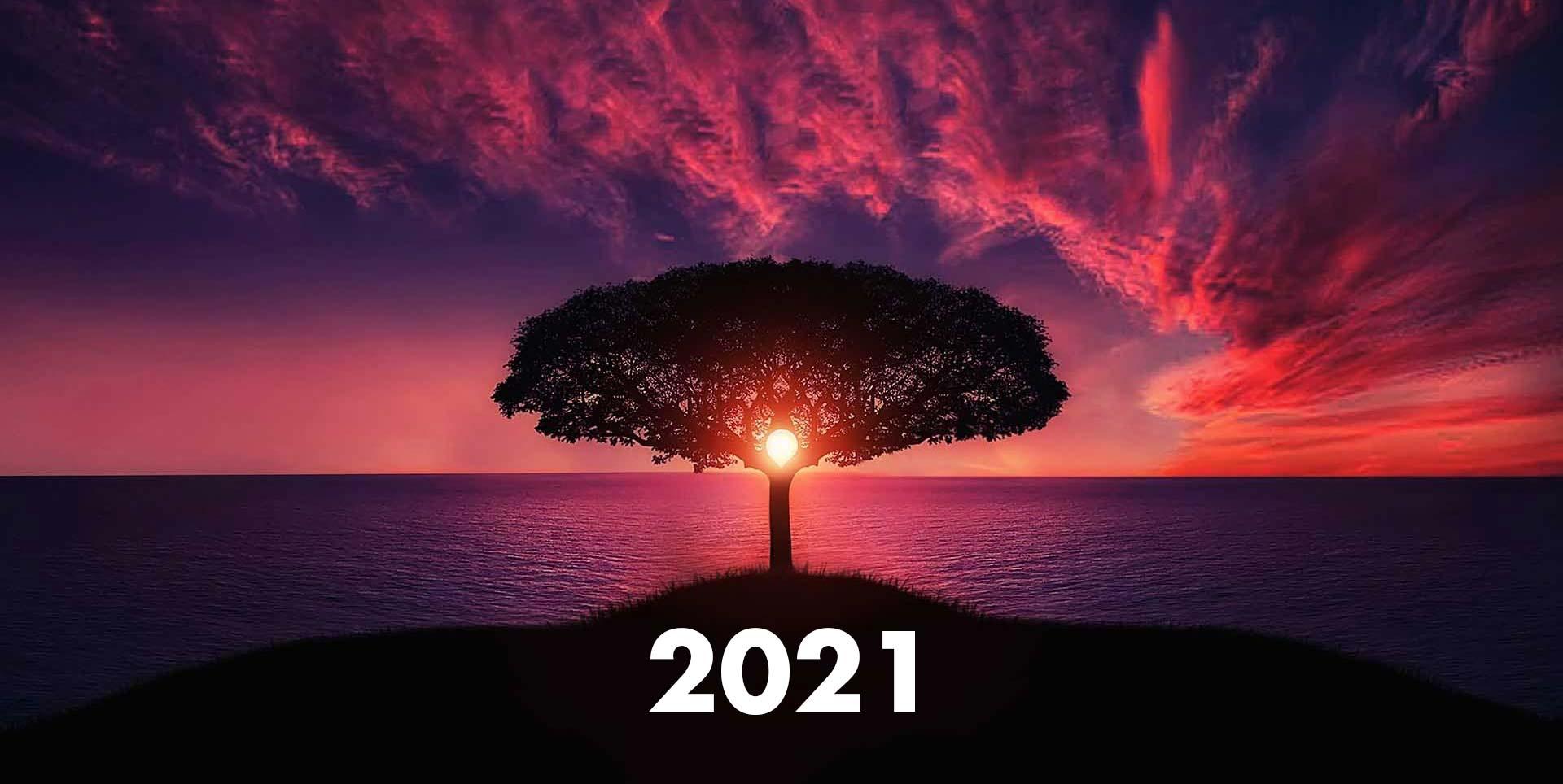 Il futuro appartiene a coloro che credono nella bellezza dei propri sogni. Buon 2021!